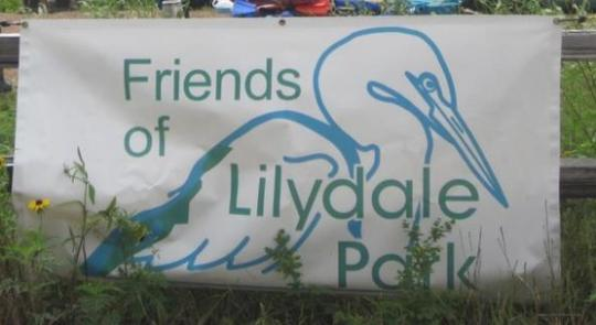 McCollum's Statement on the Lilydale Park Tragedy feature image